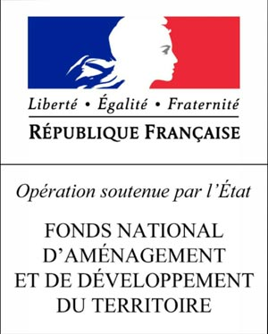 Logo fnadt