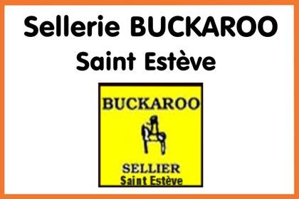 Sellerie buckaroo